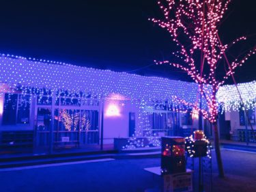 「みらいとつながるよる」に行ってみた/岡山南区のつくし保育園がイルミネーションで一般開放!!